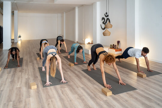 Company of people doing yoga together in studio