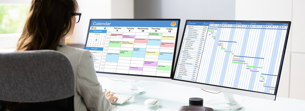 Woman Using Electronic Calendar And Scheduling Agenda