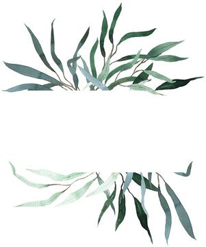 Watercolor frame with green willow eucalyptus leaves. Summer greenery template. Floral invitation frame.