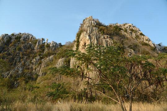 Bergkette und Blumenwiese in der Provinz Saraburi, Thailand