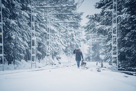 Woman walking with dog in winter forest