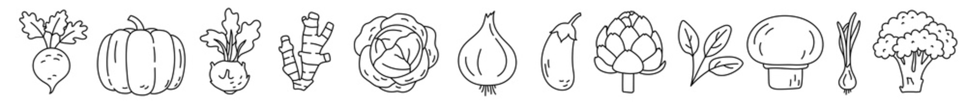 Vegetable sketch. Thin simple outline icon. Black contour line vector set. Beet, pumpkin, kohlrabi, ginger and cabbage. Onion, eggplant, artichoke, spinach, mushroom and broccoli