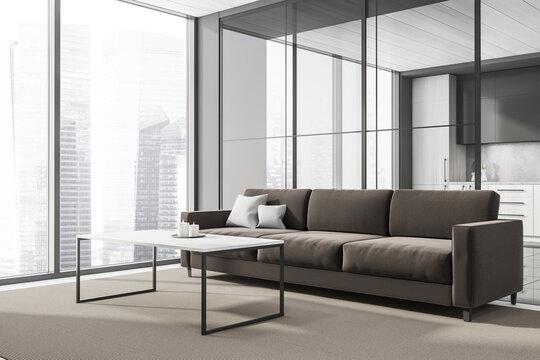 Brown sofa in the corner of grey panoramic living room