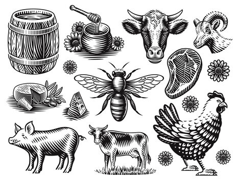 A set of black and white vector illustration of farm animals