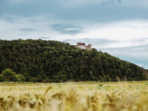 Blick auf Schloss Weitenburg, Baden-Württemberg