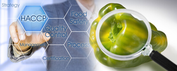 Fototapeta HACCP (Hazard Analyses and Critical Control Points) - Food Safety and Quality Control in food industry - concept with biological pepper seen through a magnifying glass obraz