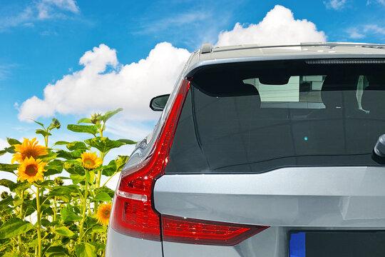 Car window mock up. Auto vinyl decal mockup. Sticker template