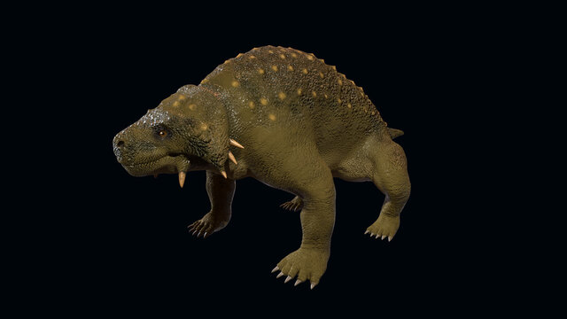 3d illustration of a Scutosaurus (Late Permian)
