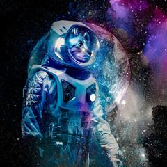 cat astronaut in space color art