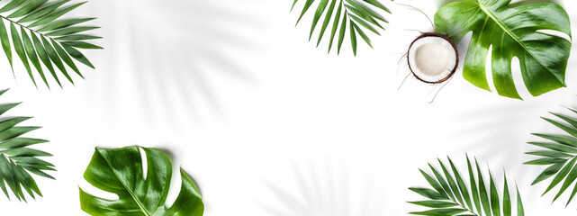 Fototapeta Tropical leaves, Monstera plants and coconut isolated on white background. Summer concept, leaf shadows, flat lay, top view obraz