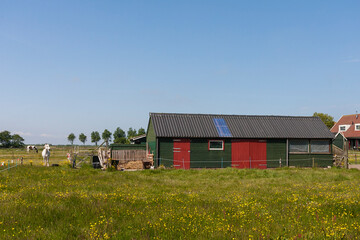 Schuur in weiland, Shed in meadow