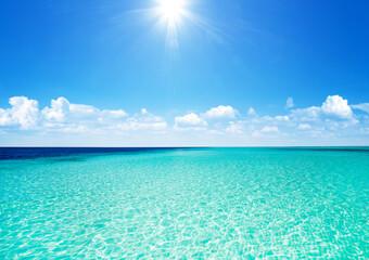 Obraz Beautiful tropical Maldives island with beach. - fototapety do salonu