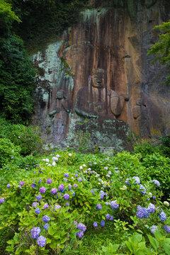 摩崖仏とアジサイ