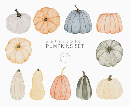 Watercolor autumn pumpkins set. Hand drawn fall food illustration isolated on white. Perfect for greeting card, invitation, stickers and other.