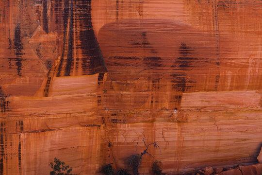 オーストラリア ワタルカ国立公園内のキングス・キャニオンの断崖絶壁