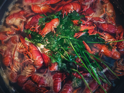 Cooking river crayfish, or crawfish, at home on a traditional recipe. A lot of red, freshwater lobsters boiling in a big bowl on hob. Preparing delicious, non gmo, organic food in house conditions