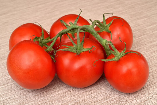 Branch with fresh ripe tomatoes on the rustic wooden table