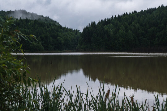 Misty natural scenic view in Romanian Mountains after rain