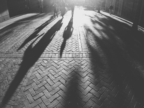 Shadows On Brick Paving