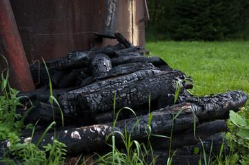 Obraz Wypał węgla drzewnego szczapy spalonego drewna - fototapety do salonu