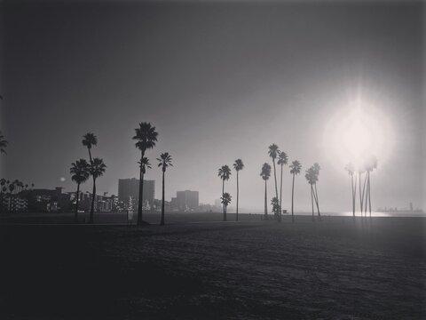 Morning On Long Beach