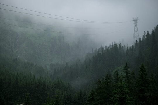 Rainfall over a pine tree forest high into the mountains on a summer day