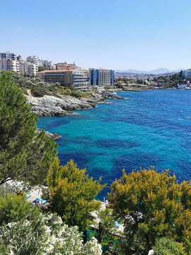 Top view of the sea and the garden with pines, bougainvilleas, mimosas and other flowers. The Aegean sea. Turkey, Kusadasi. Europe.