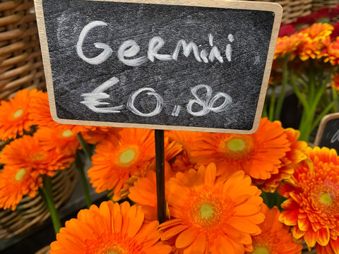 View on chalk board with handwritten price 80 euro cent and orange color germini cut flowers in basket on market (focus on center of chalkboard)