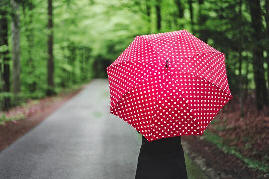 Roter Regenschirm mit Punkten im Wald