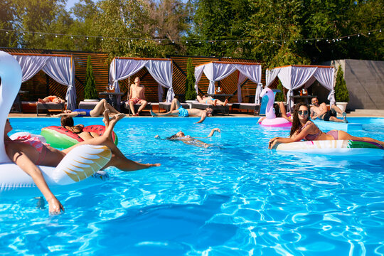 Group of friends chilling in private villa swimming pool lie in the sun on inflatable flamingo, swan, mattress. Young people relax with floaties at luxury resort on sunny day. Bikini girls sunbathing.