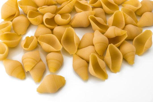 Italian raw dry pasta conchiglioni bronze drawn isolated on white background. Produced in Gragnano, Naples, Italy