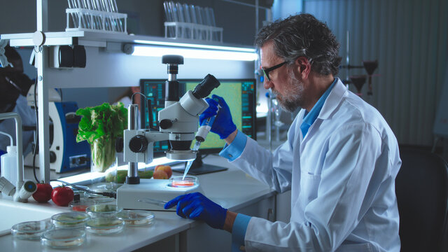 Mature man running tests with vegetables in lab