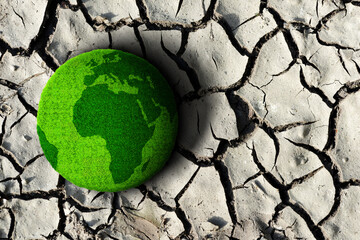 Fototapeta Green planet on the dry cracked soil. Concept of change climate or global warming. obraz