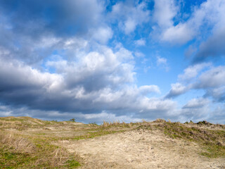 Schoorlse duinen, Noord-Holland Province, The Netherlands