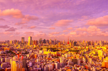 東京 夕日があたる大都会