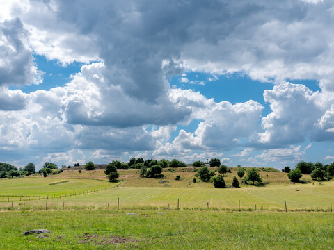 Cultural grass landscape with burial mounds from the viking age and fields and fences. Dramatic clouds in the sky. Stones and trees scattered in the scene. Shot in Birka, Sweden, Scandinavia