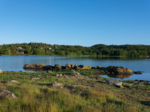 Rocks and calm water on early summer morning. Grass in foreground and woodland background.