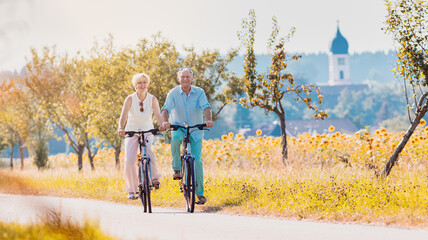Obraz Senior couple, woman and man, riding their bikes along field of sunflowers - fototapety do salonu