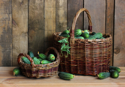 fresh green cucumbers in baskets. food, vegetables.