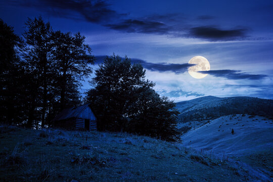 countryside landscape of carpathians at night. green meadow under dark sky in full moon light. trees on the hill