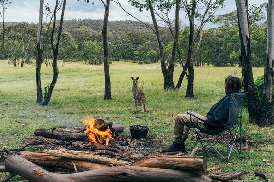 Man at campfire watching kangaroo, Australian bush