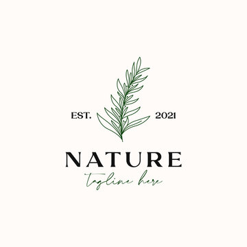 Tea Tree Monoline Vintage Hipster Logo Template Isolated in White Background