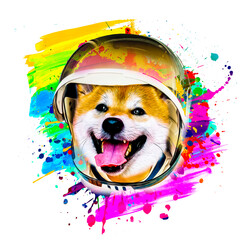 dog with space hat