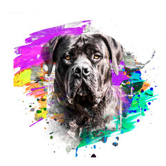 english bulldog cute dog head with creative abstract elements on white background