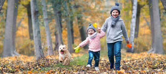 Fototapeta lachende Kinder im Herbst im Wald obraz