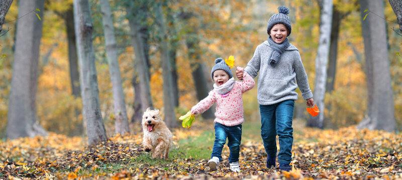 lachende Kinder im Herbst im Wald