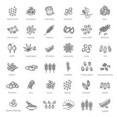 Fototapeta Plant seed vector icon set obraz