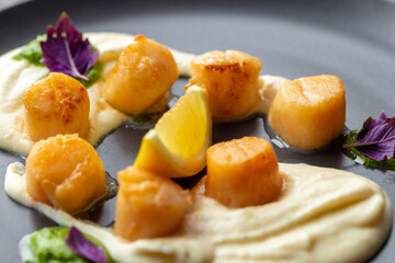 Scallops in creamy sauce on black plate