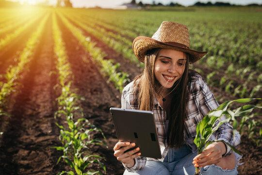 woman farmer in corn filed and examining corn