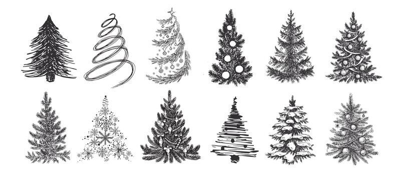 Christmas tree set. Hand drawn illustration. Vector.